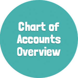 Chart of Accounts Overview2