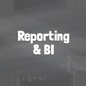 Microsoft Reporting and BI